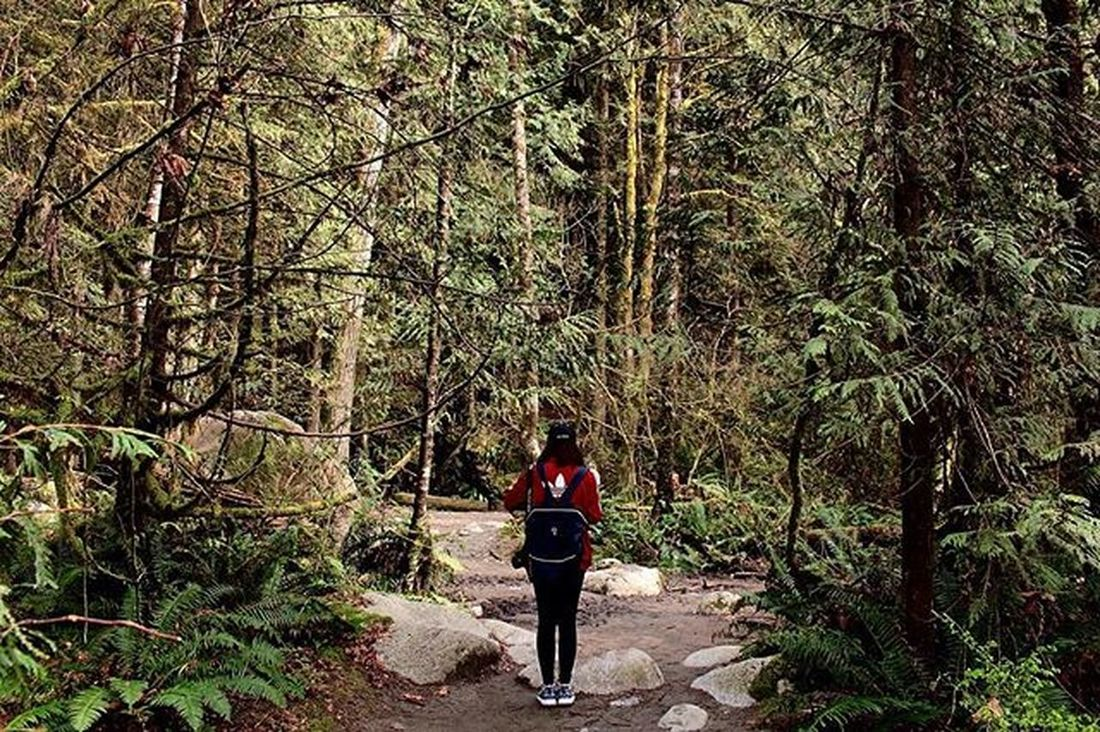 Hours upon hours in this Forest > > > > > > > > Canada Northvancouver Northvan Northvancouver Lynncanyonpark Lynncanyon Vscocam Vancity VSCO Vancouver Vancitybuzz Trees Tumblr Adidas Nike Roshe  Baseballcap Artsy Trail