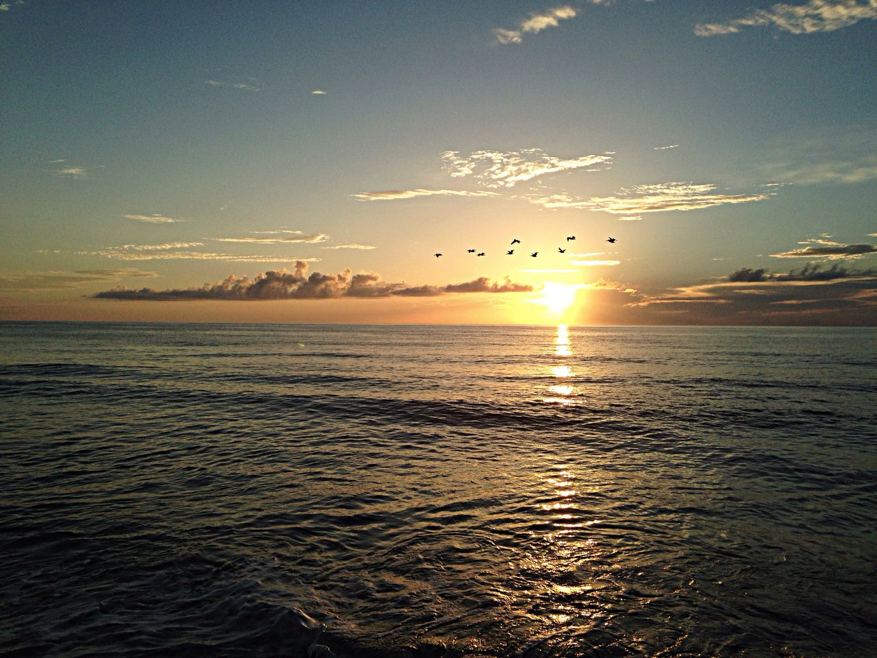 Sunrise in Nags Head, North Carolina. OBX14 Sunrise Water Birds