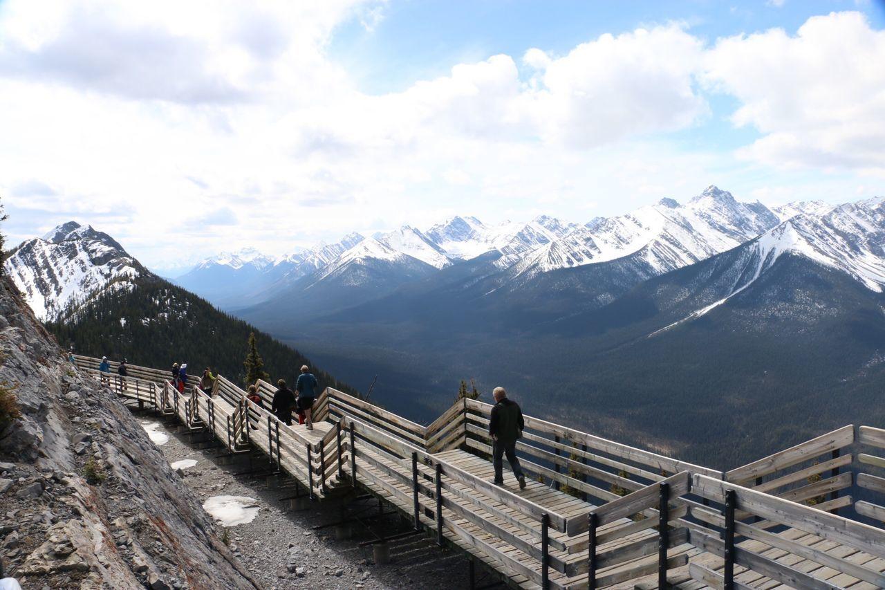 Growing Better The Traveler - 2015 EyeEm Awards The Great Outdoors - 2015 EyeEm Awards Banff National Park  Enjoying Life
