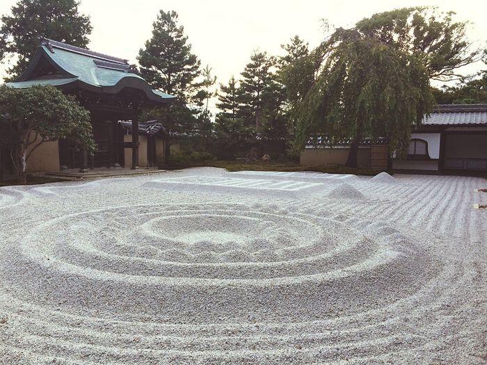 Japanese Garden, big one!
