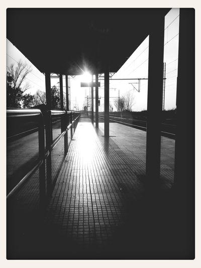 Trainstation Alone Traveling Lastraw