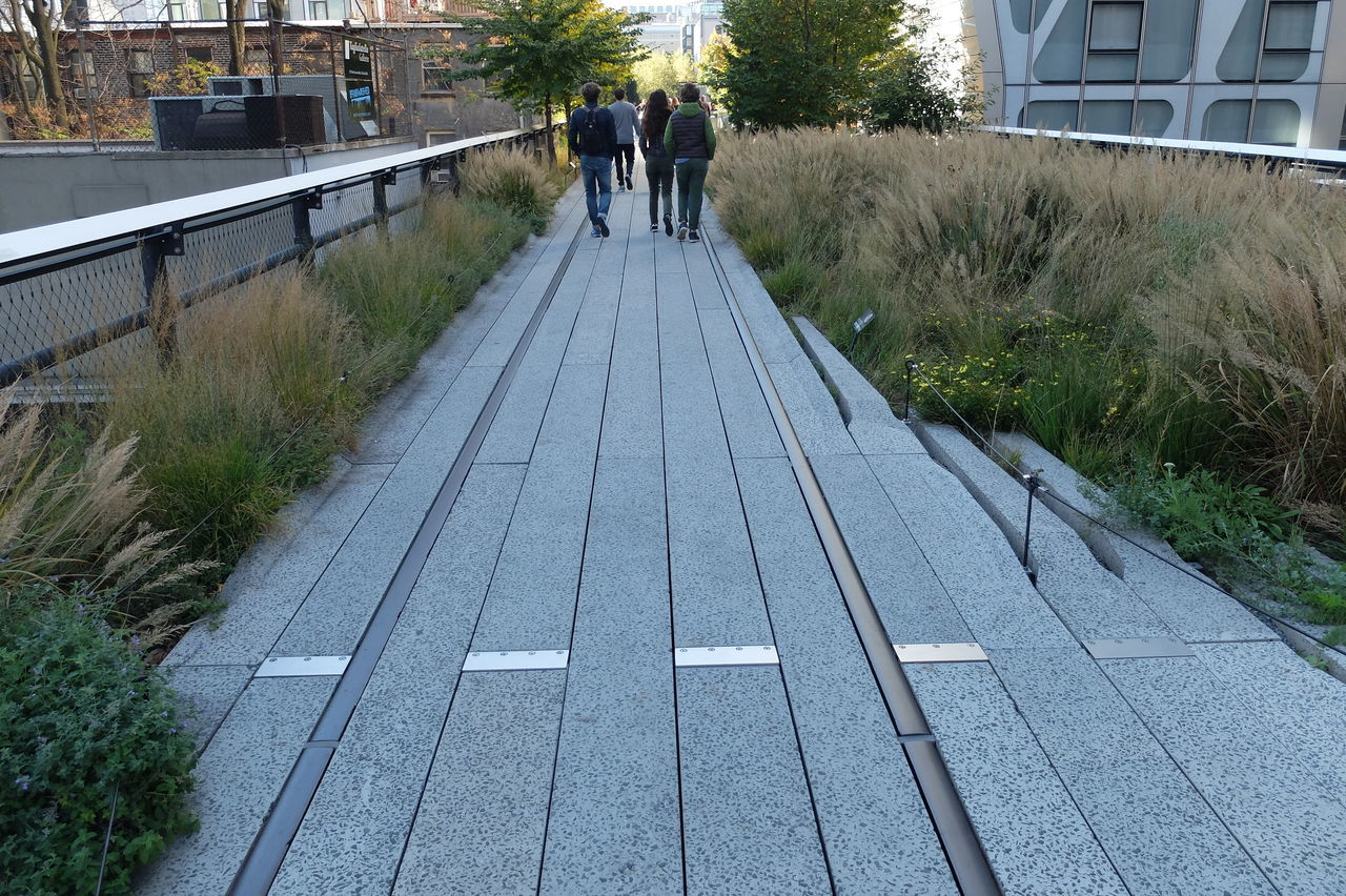 walking the tracks Adult Adults Only Day Highline Tracks Men NYC Highline Outdoors People Real People The Way Forward Tree Walking Walking The Tracks