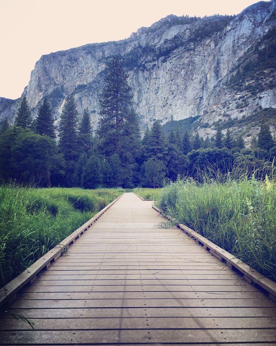 Beautiful Yosemite! Nature Photography Nature Yosemite Yosemite National Park Yosemitevalley Wilderness