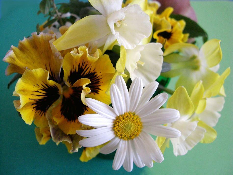 Un petit bouquet de mon jardin Flower Beauty In Nature Gardening Jardinier Pansy Marguerite マーガレット ガーデニング 花束 フラワーアレンジメント