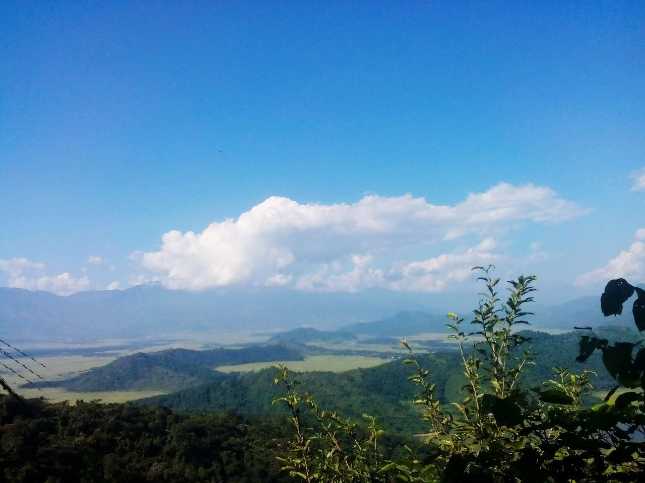 nature, mountain, sky, no people, plant, growth, beauty in nature, blue, landscape, outdoors, scenics, day, blue sky