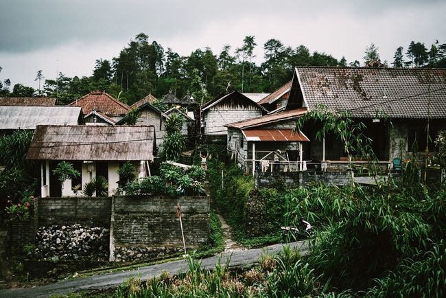 Bali Village Village Life Rural Scenes Rural Traveling Travel Travel Photography Travelling Tropical