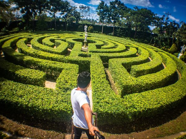 EyeEmNewHere the maze Maze Hedge Green Color Outdoors Tree Adults Only People Adult Day Only Men One Man Only Adventure Maze Maze Runner Hot Day Miles Away Miles Away