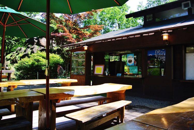 長野県 安曇野市 大王わさび農場 Japan Nagano Azumino Daiou Wasabi Farm