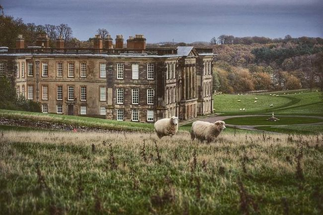 Calke Calkeabbey Derbyshire Derbyshiretimes CapturingBritain Ukpotd Ig_britishisles Nationaltrust Fiftyshadesof_history