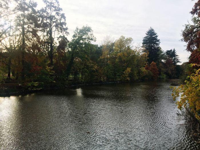 Giardini Margherita, Bologna