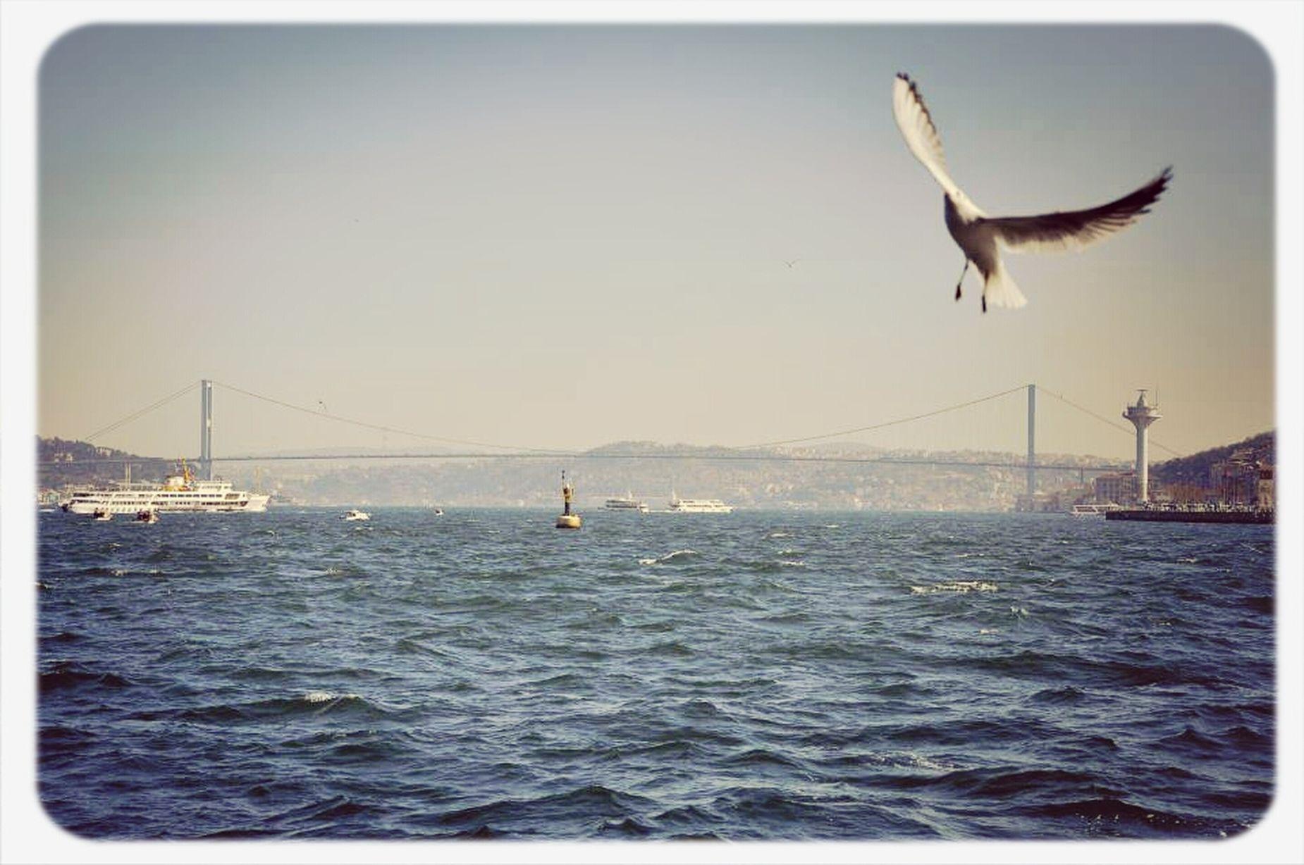 In Istanbul Bosphorus Themarmara