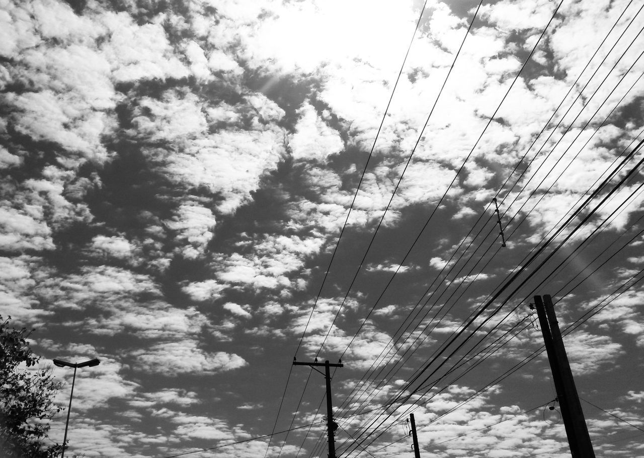 low angle view, sky, cable, no people, day, nature, tree, outdoors, growth, beauty in nature, electricity pylon