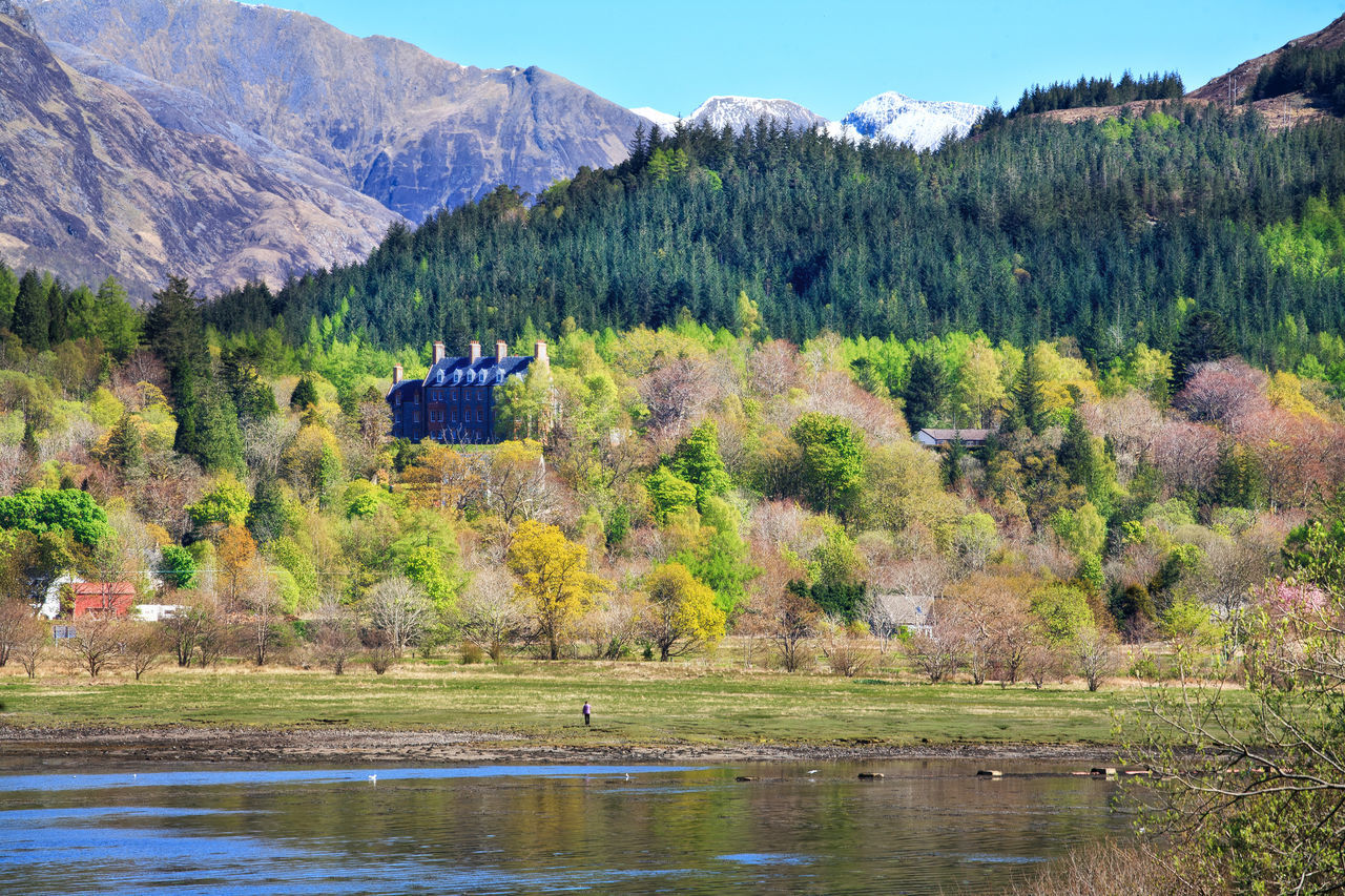 View of colourful forest and old castle at Loch Leven, Scottish Highlands, Scotland, UK Beauty In Nature Castle Day Forest Forest Photography Growth Lake Lake View Landscape Loch Leven Mountain Mountain Range Nature No People Outdoors Pinaceae Scenics Scotland Scottish Highlands Sky Tranquil Scene Tranquility Travel Destinations Tree Water