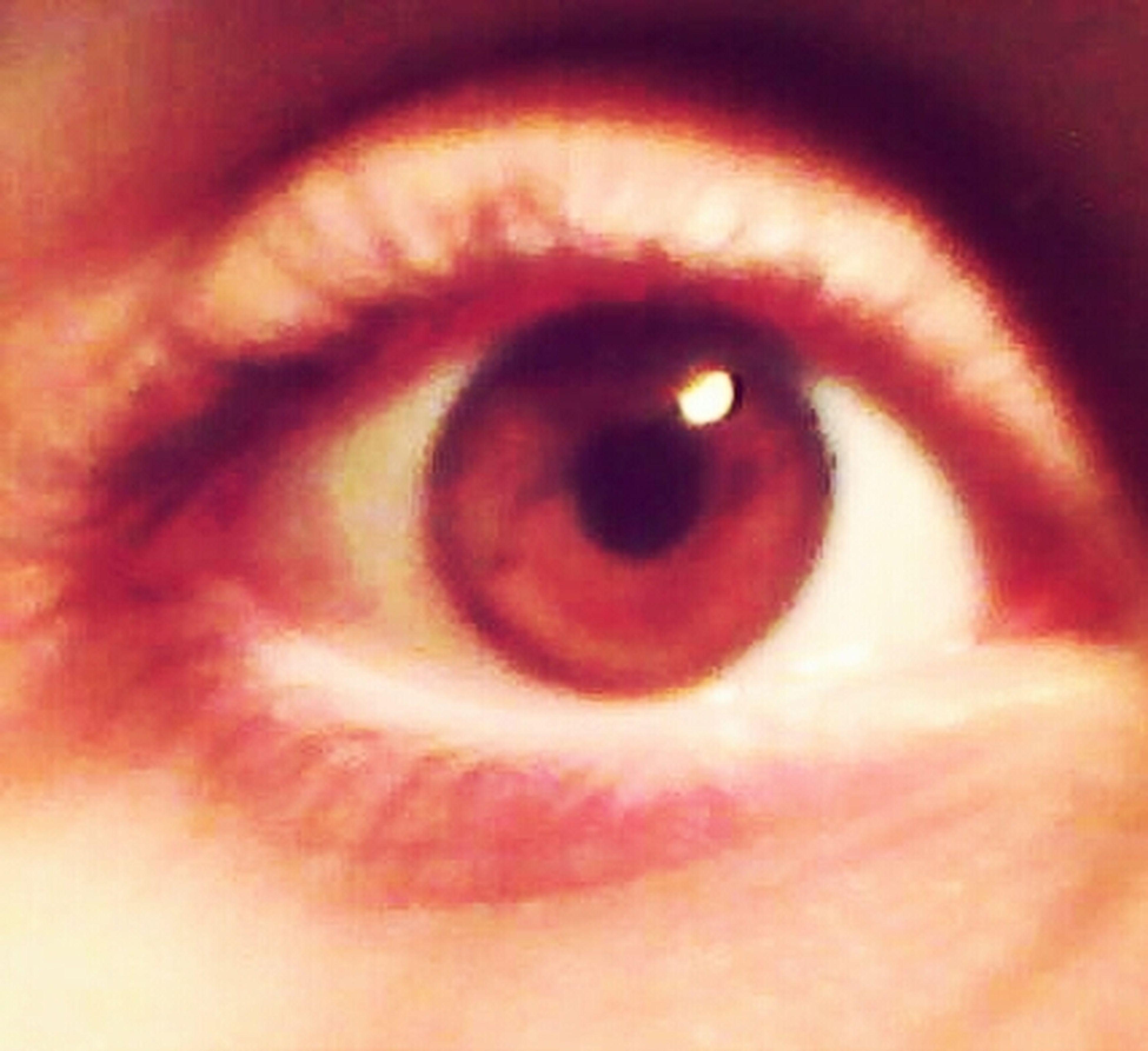 human eye, close-up, eyelash, eyesight, sensory perception, extreme close-up, part of, indoors, full frame, extreme close up, eyeball, red, unrecognizable person, backgrounds, iris - eye, detail, vision