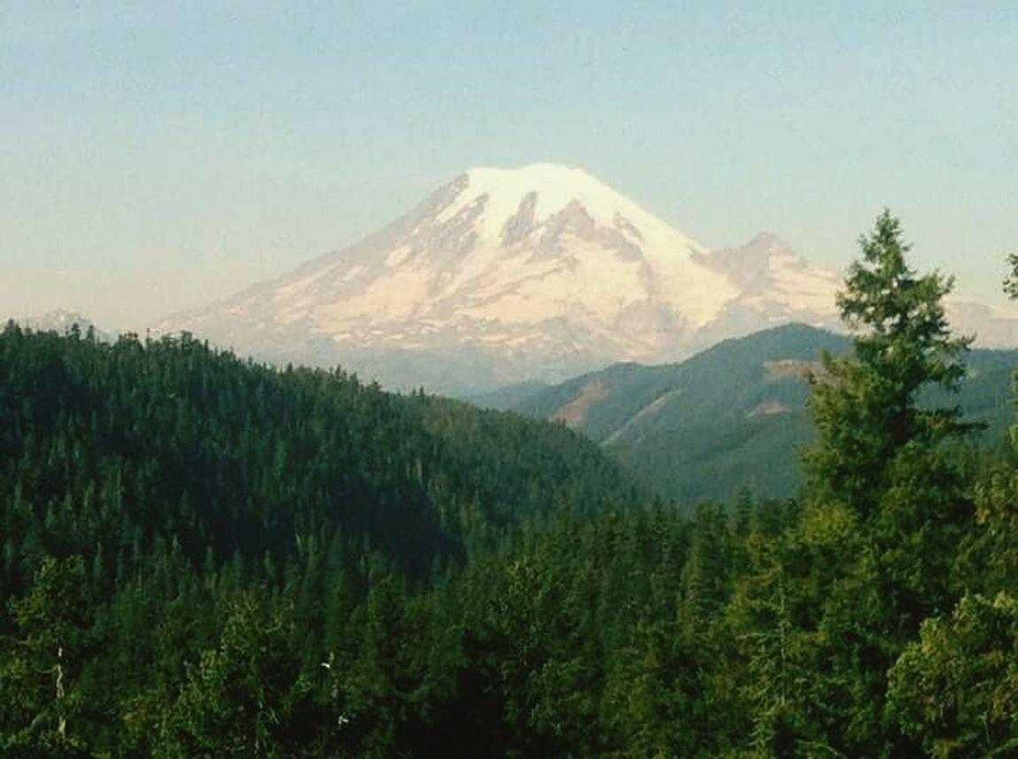 Mt. Rainier Where my soul goes to heal