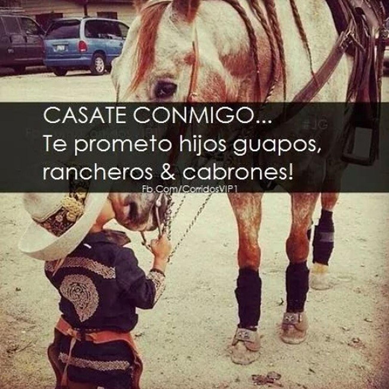Ranchero Rancho.♡ Arandas