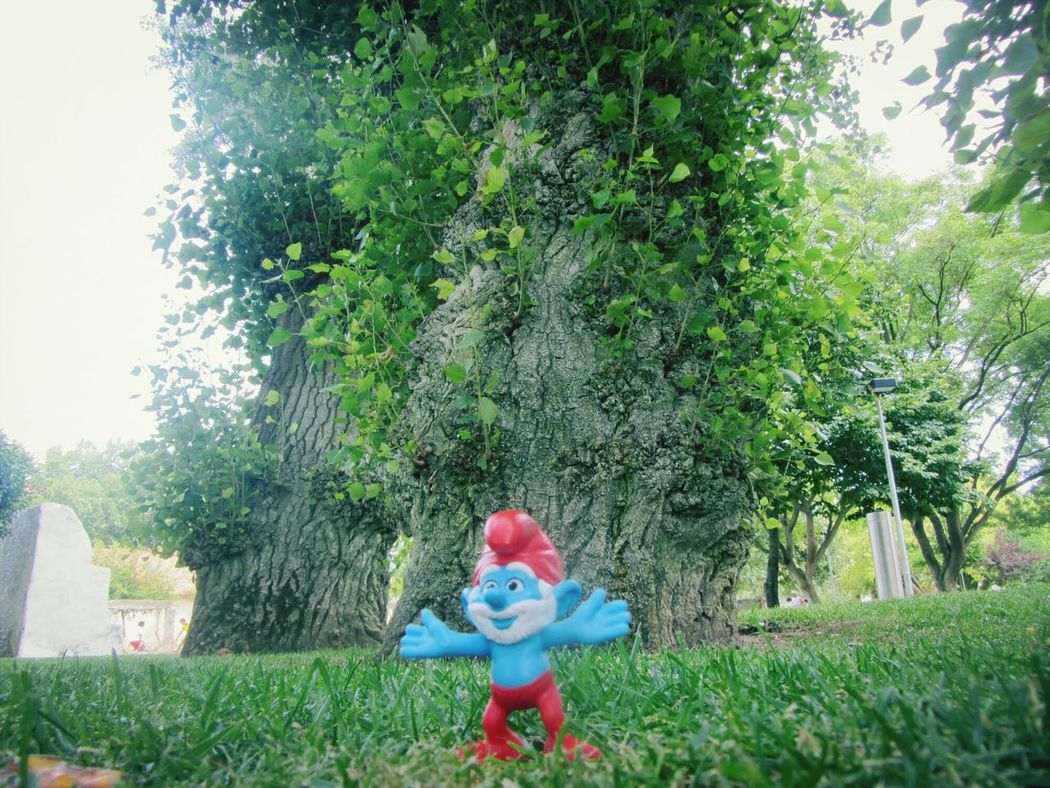 The smurf in the park.. Spotting Smurfs The Smurfs Artistic Photo Eye For Photography Toy Smurfs On Tree Leafs Trees And Nature Trees Little Toy Smurfs Nature Park Toys Toys In Nature Day Ground Level Ground Level View Toy Grass