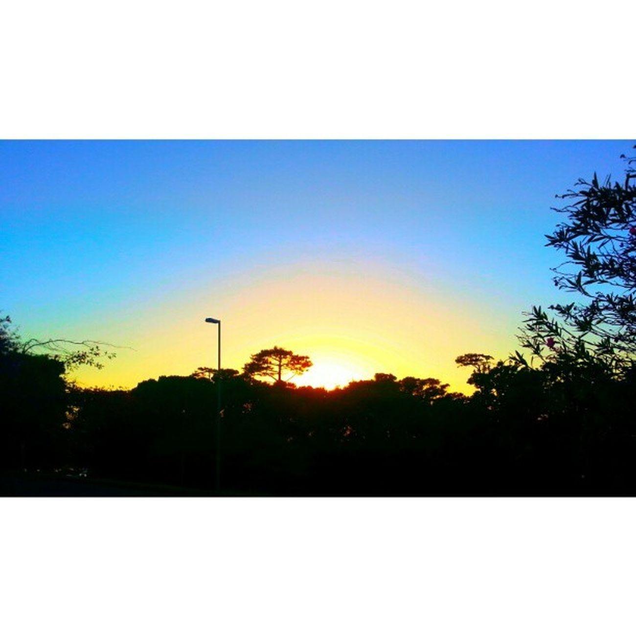 Sunupper Sun Sunrays Morning winter