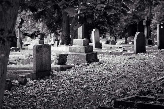 Black & White Old Cemetery Churchyard Burial Ground Graveyard Graveyard Beauty Blackandwhite Black&white Photography Creative Photography Canon Canonphotography South West London