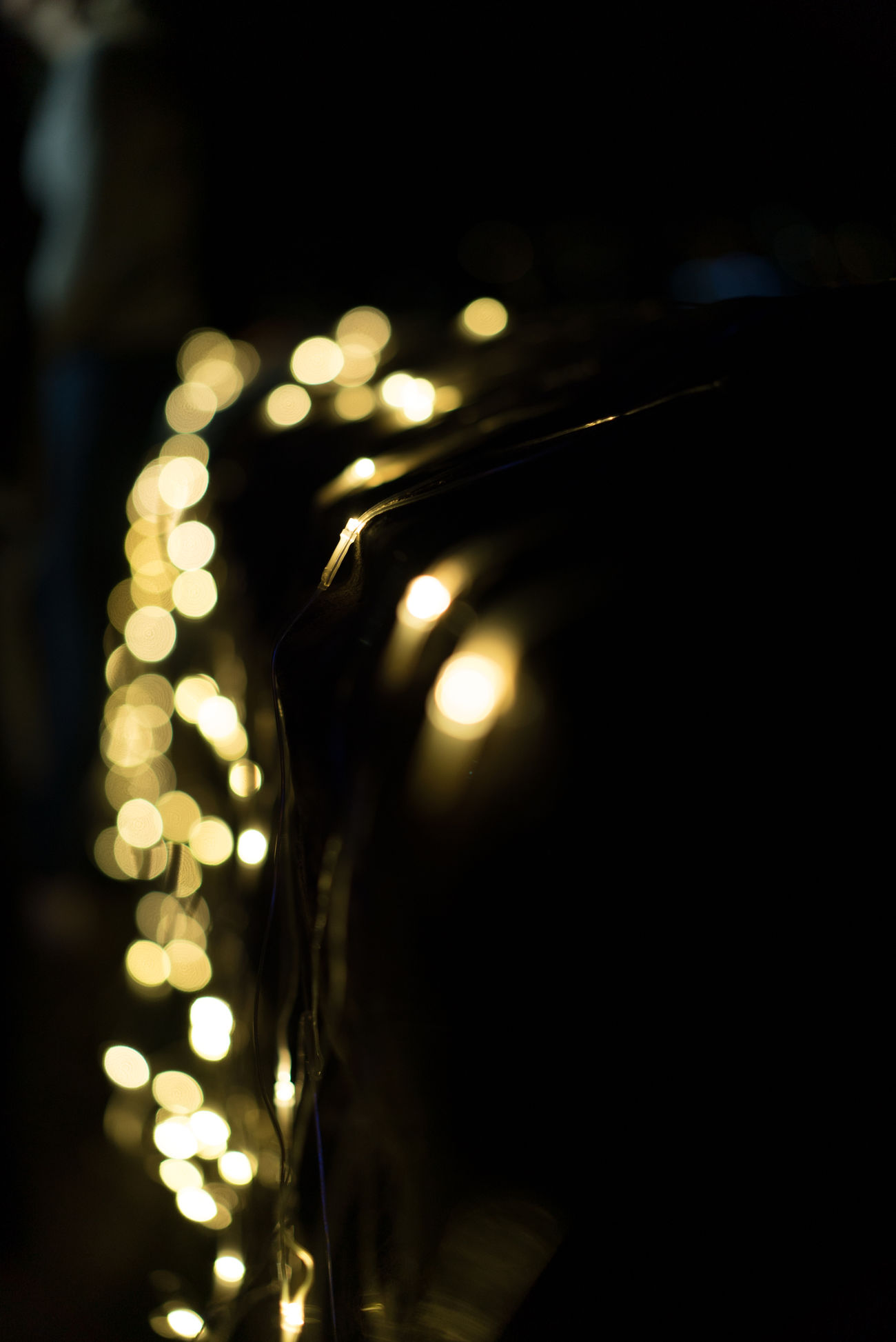 Black Background Close-up Electric Light Electricity  Filament Glowing Gold Colored Illuminated Indoors  Light Bulb Lighting Equipment Night No People