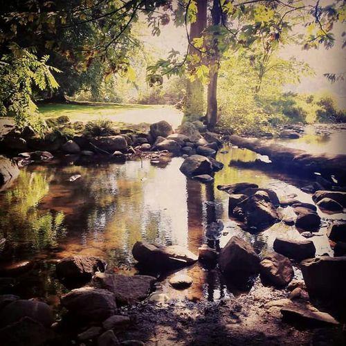 Relaxing EyeEm Best Shots EyeEm Nature Lover