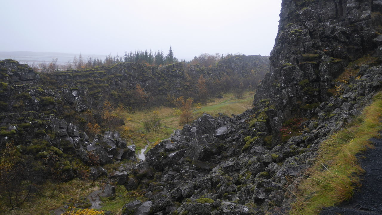 Beauty In Nature Day Forest Hiking Landscape Mountain Nature No People Outdoors Pinaceae Rock - Object Scenics Sky Thingvellir Thingvellir National Park Tranquil Scene Tranquility Tree Tree Area þingvellir Þingvellir National Park