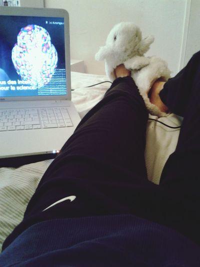 Grey's Anatomy, jogging, patins, lit =détente