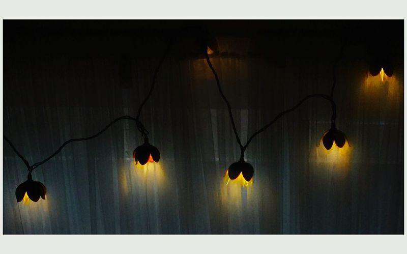 """Holiday Lights"" Malephotographerofthemonth Nature_collection EyeEm Gallery EyeEm Best Shots Malephotographerofthemonth Holiday Lighting Decoration Lighting Equipment Hanging No People Silhouette Night Illuminated Indoors  Nature"
