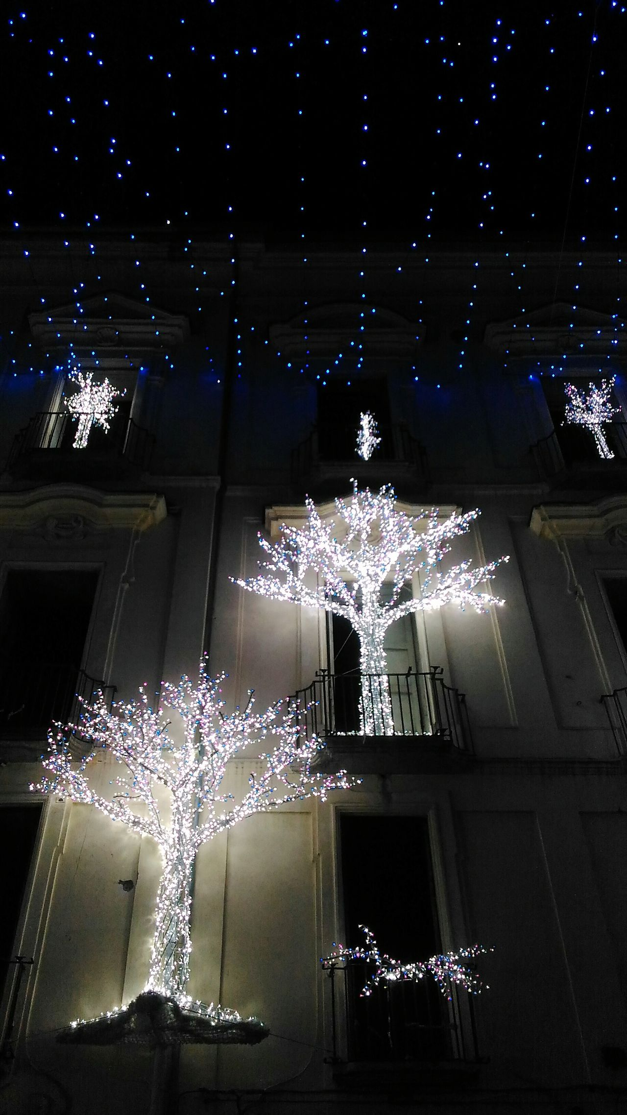 Luci D'artista Luci Di Natale Salerno Italy Illuminated Lighting Equipment Christmas Decoration Night Indoors  Christmas Lights Christmas Low Angle View Holiday - Event No People Light Effect Midnight Stage Light Sky Christmas Ornament Trees Building Exterior White Light