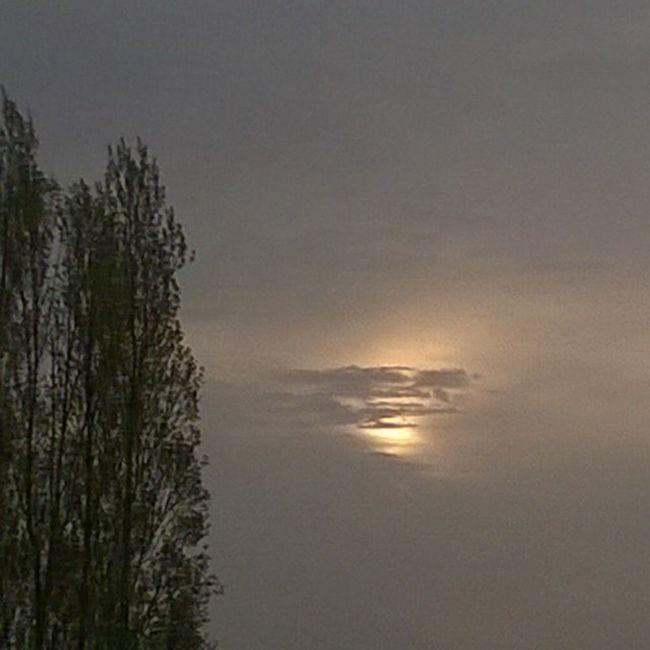 The Sun behind the Clouds Le Soleil derrière les Nuages Sunrise Leverdesoleil Countryside Campagne Taupont Morbihan Miamorbihan Bretagne Breizh Jaimelabretagne Bretagnetourisme Nature Trees Arbres Nofilter Instagram