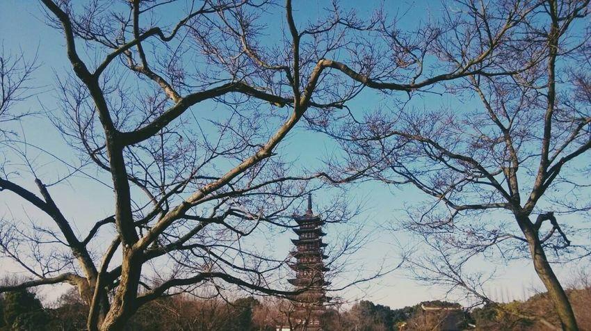 China New Year Sunshine Sky 蓝天与古塔