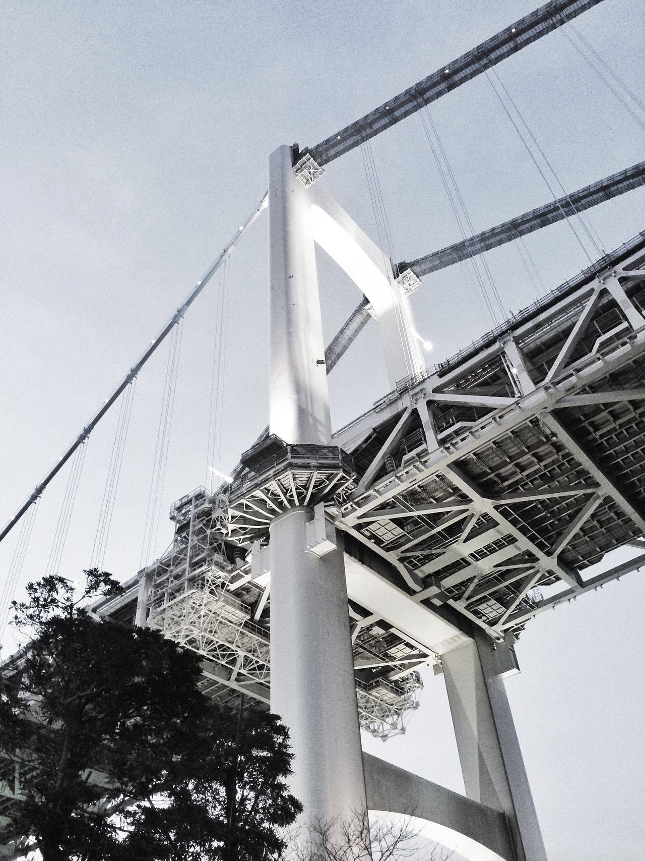 Bridge Cityscapes White Blackandwhite