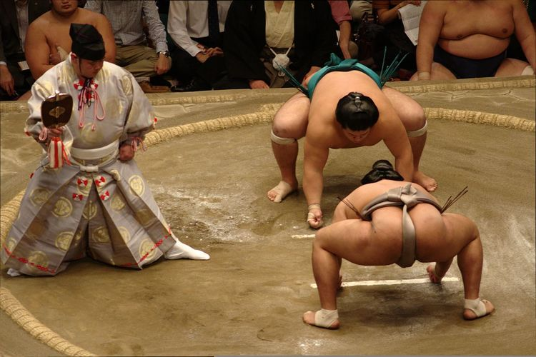 Sumo Sumou Japanese Culture Traditional Culture Sports
