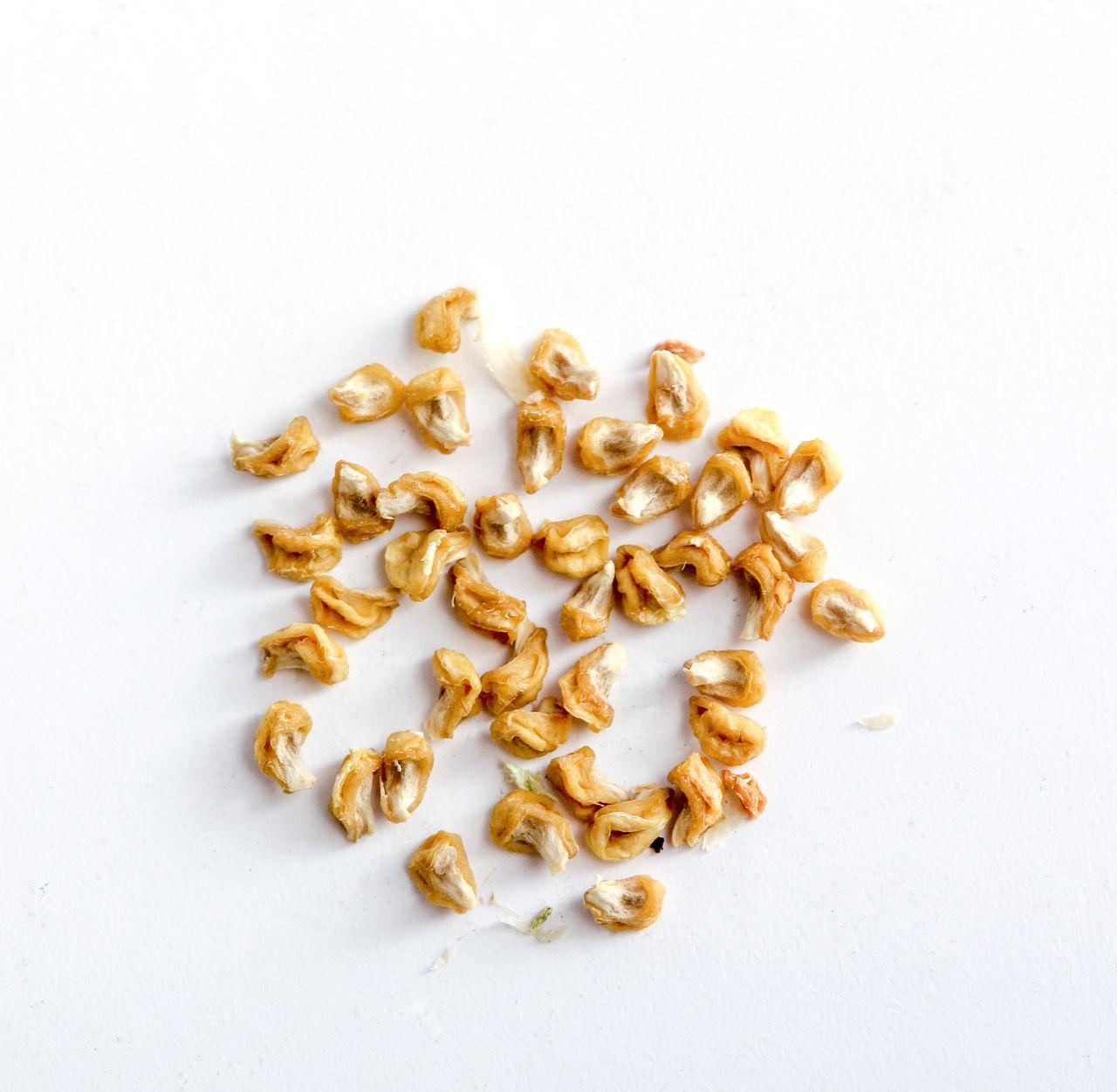 salted corn seeds Close-up Corn Dry Food Healthy Eating Healthy Food No People Salt Corn Seeds Salted Corn Seed Seeds Vegetarian Food White Background