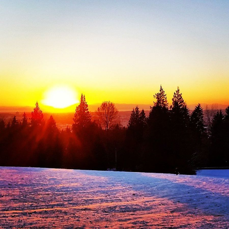 Sunset from Burnaby Mountain tonight. Burnaby BC Sunset Burnabybc Snow Sledding clouds trees colors nature