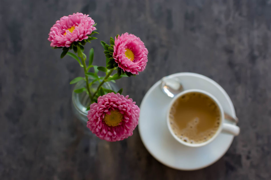 another coffee, another sunday, same friends Blurred Motion Breakfast Calm Close-up Coffee Coffee Time Cup Of Coffee Eye4photography  EyeEm Best Shots Flower Focus On Foreground Fresh Freshness Good Morning Growth HAMBURG ... Moin Moin Kaffee Keep Calm Its Sunday Moin Pattern Pink Color Selective Focus Sunday Sunday Moods Table