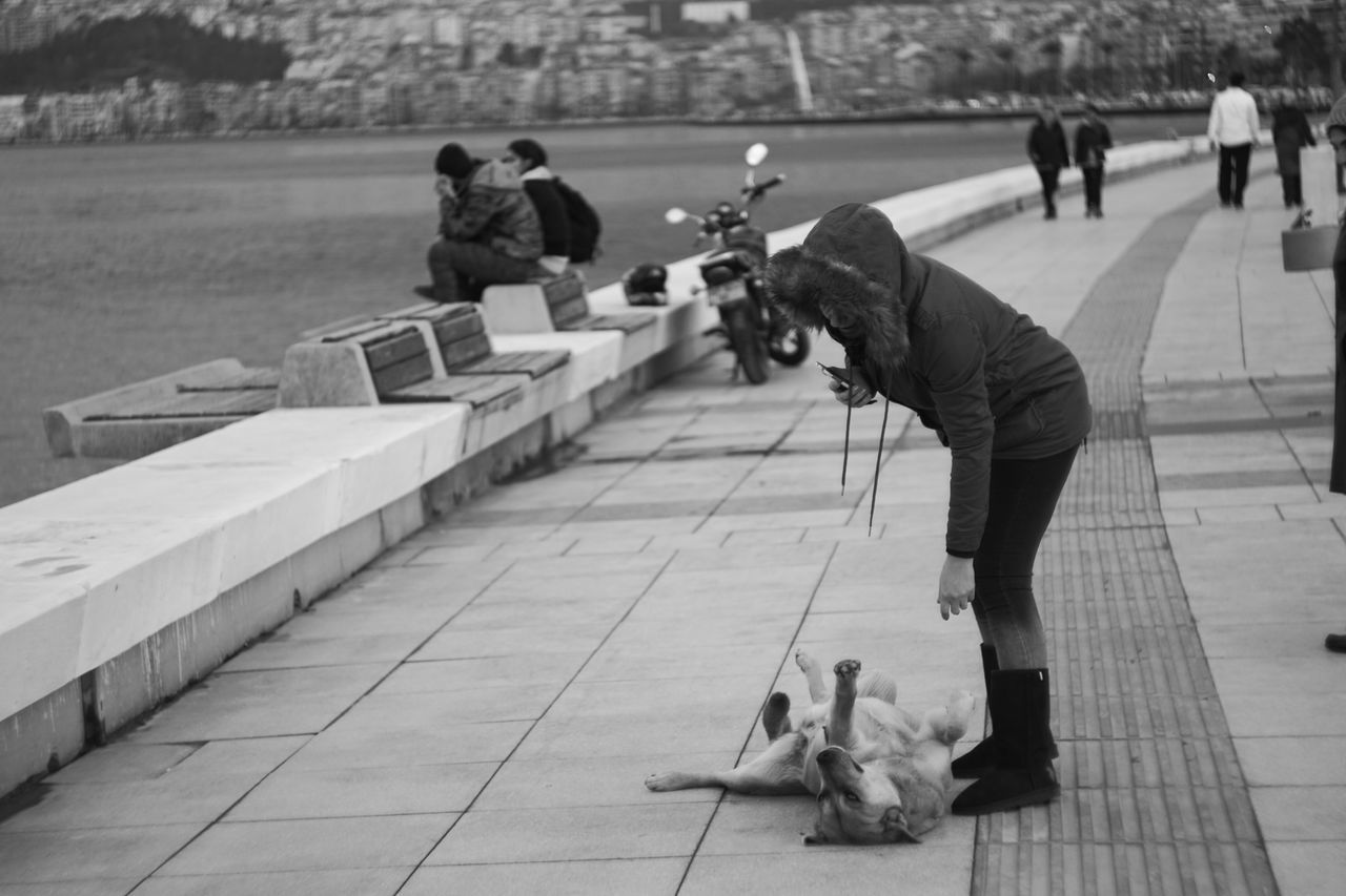 Day Outdoors Adult People Capture The Moment Sony A6000 Helios 44m-6 Helios Streetphotography Legacy Lenses Blackandwhite Dog Love Shoot A Stranger Seaside