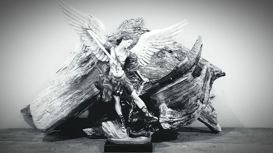 Fallen Angels Seawood Protector Of Earth