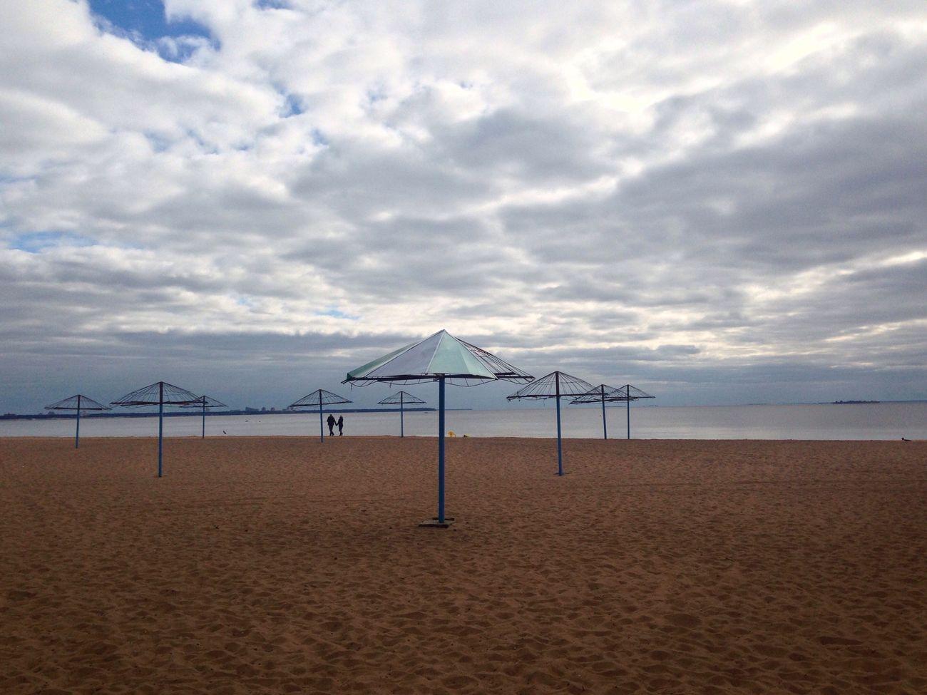 Beach Autumn Sea Gulf Of Finland Baltic Sea