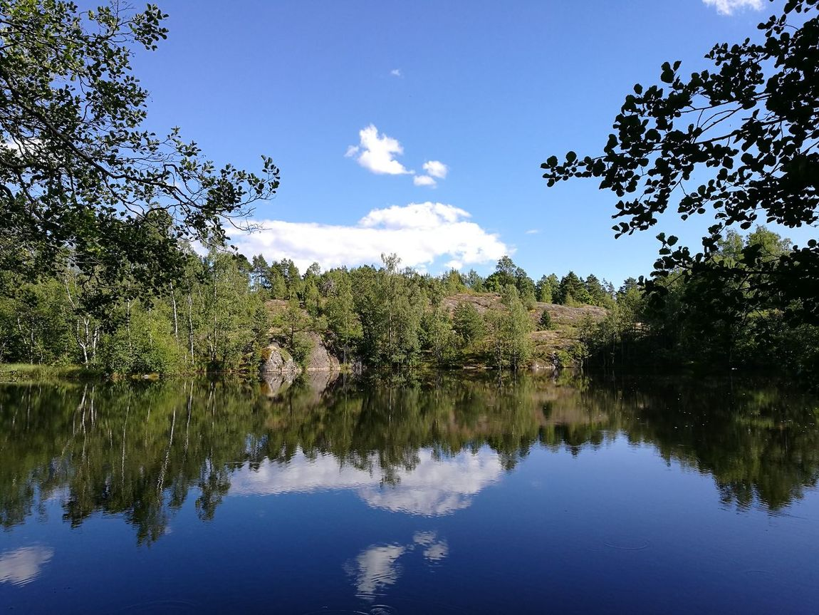 A pond at Vallisaari island by Helsinki. Nature Summertime Island Pond Landscapes