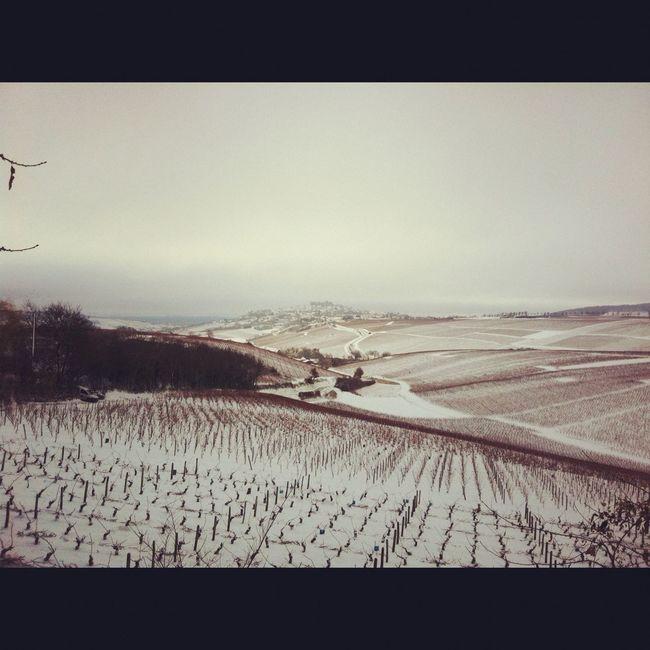 Snow In Sancerre