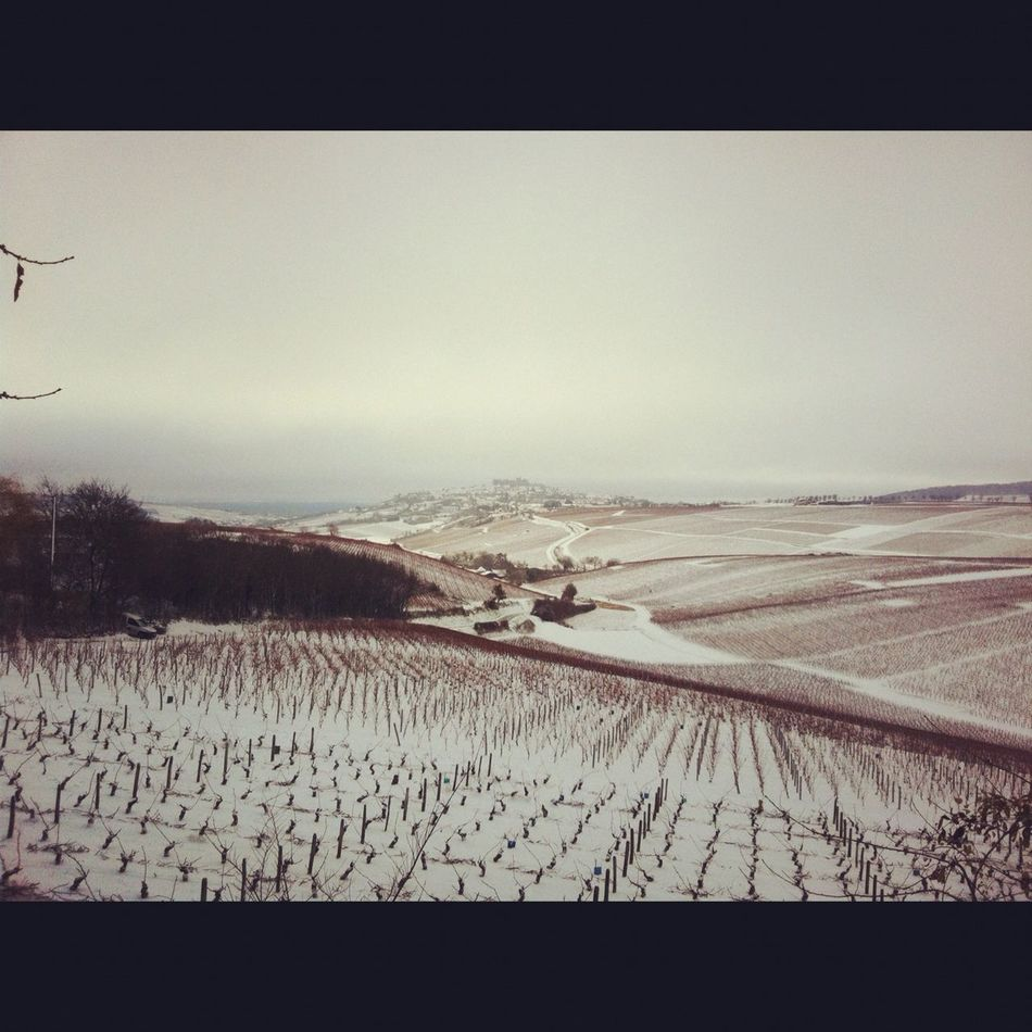 Snow In Sancerre
