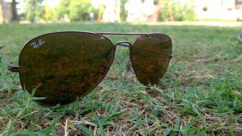 Sunglasses ✌👌 Lawn Nature