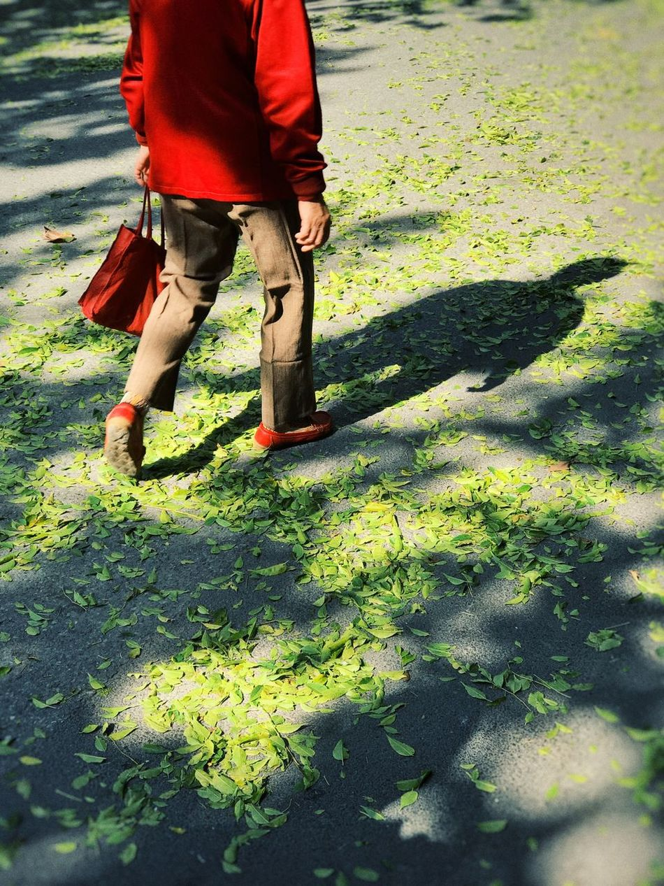 Poem Auntumn Fall Leaves Old Man Older  Walkway Walking Alone... Green Leaves Light And Shadow Red One Person Human Leg Human Body Part Nature People