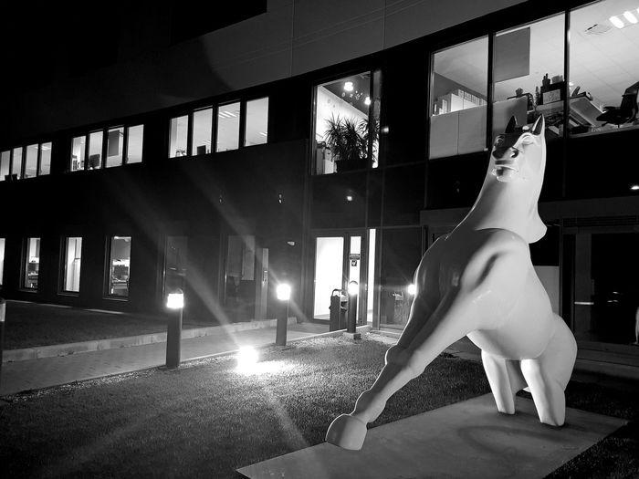 Mustang Montpellier Eureka Animal Themes