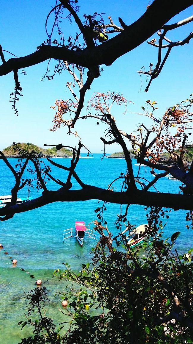 Always be remembered. Eyelands Bluehue Nature Amazingwonders Ofcreation Priceless First Eyeem Photo