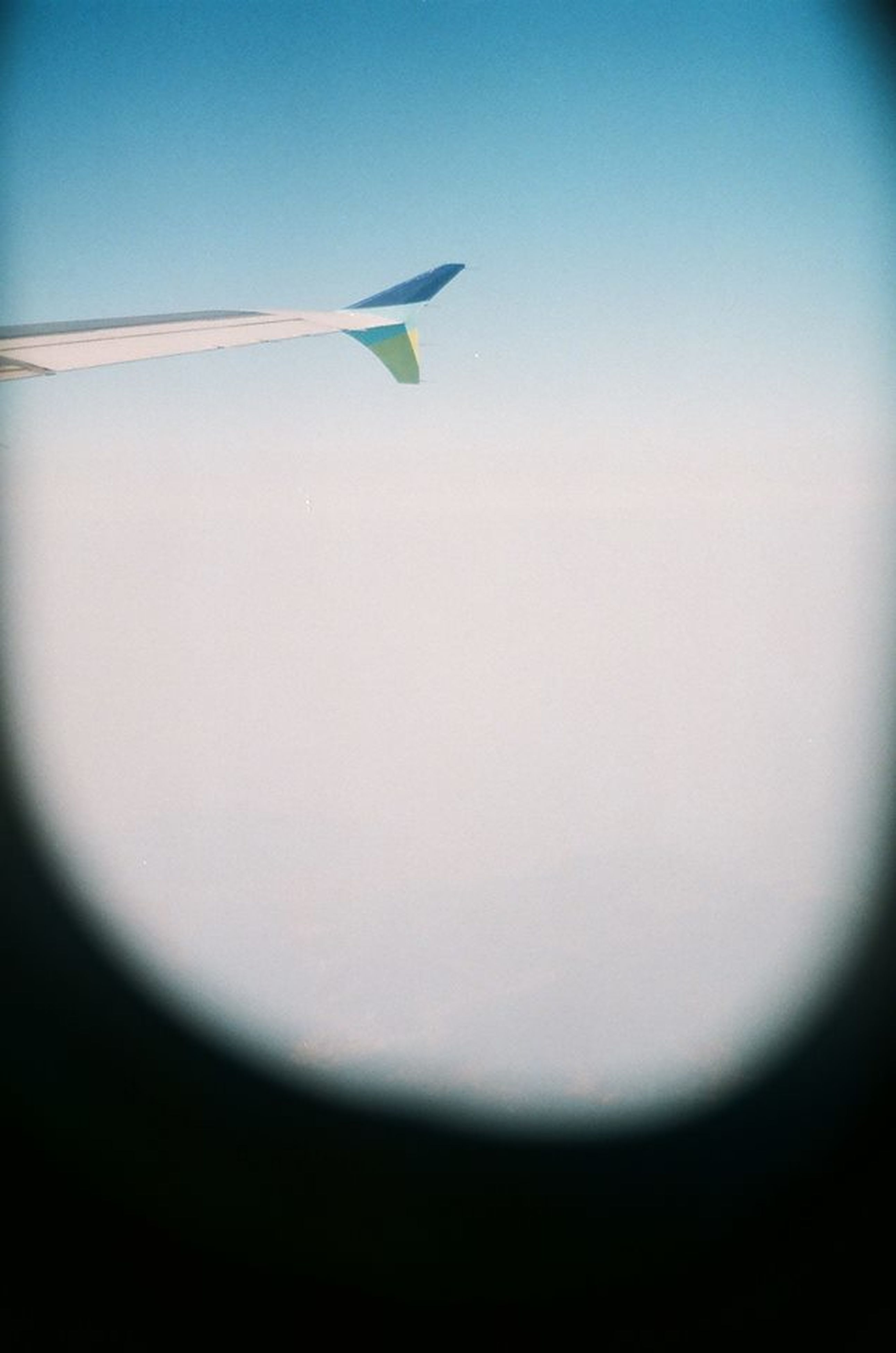 airplane, copy space, indoors, close-up, clear sky, flying, nature, no people, air vehicle, part of, sky, cropped, beauty in nature, transportation, blue, window, white color, white, day, aircraft wing