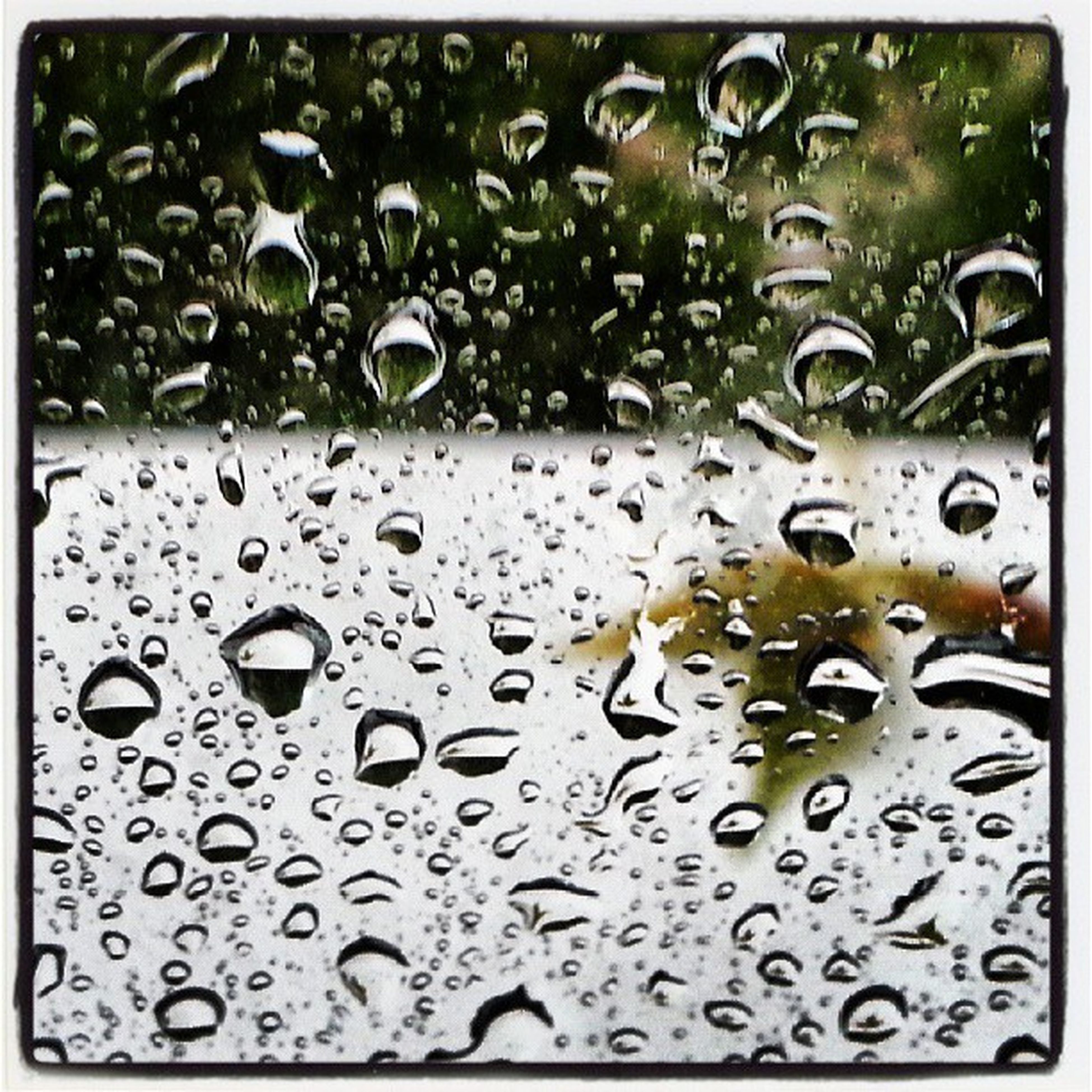 drop, wet, water, rain, window, raindrop, glass - material, transparent, indoors, backgrounds, full frame, weather, transfer print, glass, season, close-up, monsoon, water drop, auto post production filter, droplet