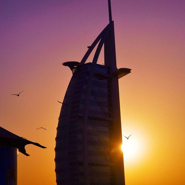 تصويري  عدستي برج_العرب الغروب دبي الامارات نيكون Dubai Sunset Nikon Nikond3200 Nikon D3200