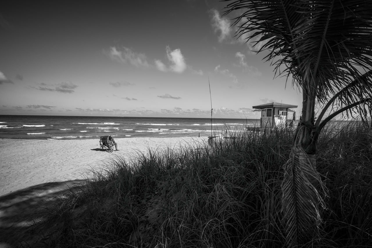 Contemplate Beach Beauty In Nature Blackandwhite Photography Cloud - Sky Coastline Day Fujifilm_xseries Horizon Over Water Leisure Activity Marram Grass Nature Outdoors Palm Tree People Photographyisthemuse Sand Scenics Sea Sky Tranquil Scene Tranquility Travel Destinations Tree Vacations Water